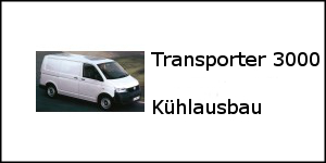vw_transporter_3000